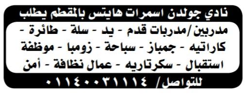 إعلانات وظائف جريدة الوسيط اليوم الاثنين 6/5/2019 16