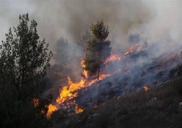 """بالفيديو والصور """"نتنياهو يستغيث بدول العالم والحرائق تشتد"""".. النيران تلتهم إسرائيل والخسائر فادحة 1"""