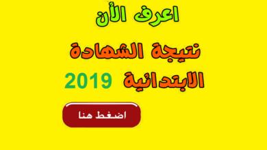 نتيجة الصف السادس الابتدائي الترم الثاني برقم الجلوس 2019
