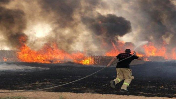 """بالفيديو والصور """"نتنياهو يستغيث بدول العالم والحرائق تشتد"""".. النيران تلتهم إسرائيل والخسائر فادحة 4"""