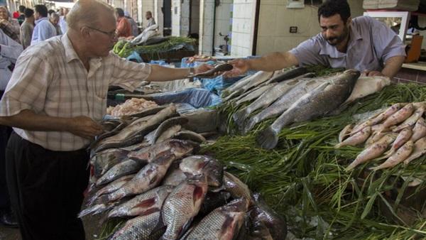 تعرف على أسعار الأسماك رابع أيام شهر رمضان