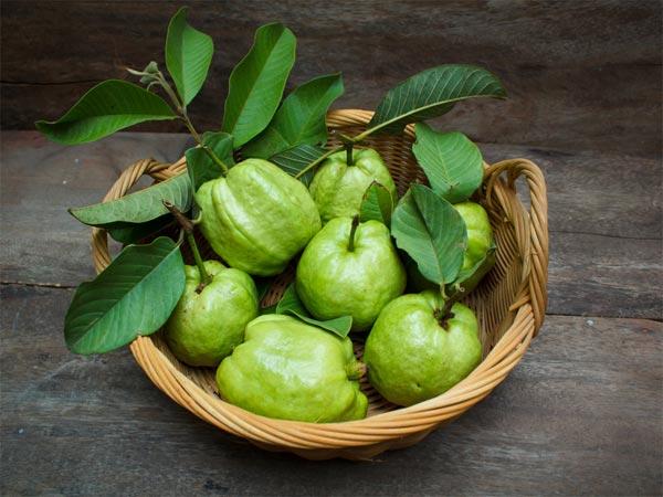 الفوائد الصحية للجوافة