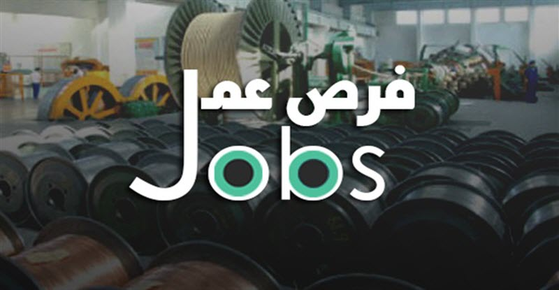 براتب يصل إلى 2500 جنيه .. تعرف على وظائف القوى العاملة بالقليوبية