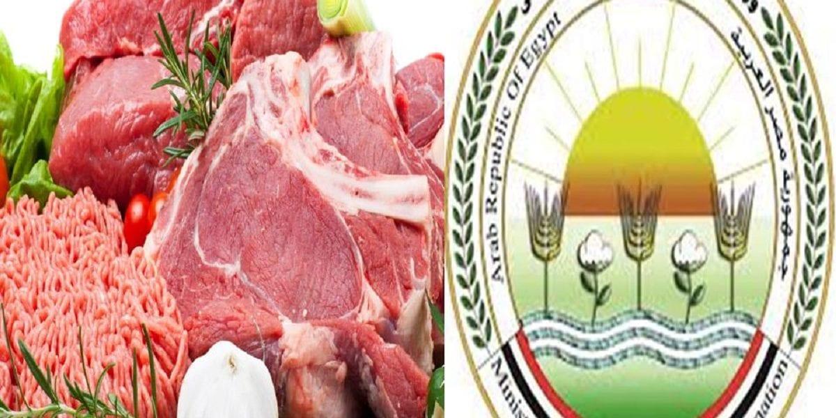 مصر.. ارتفاع في أسعار اللحوم الفترة المقبلة