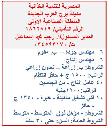 """""""جميع المؤهلات"""" مئات الوظائف المعلنة بنشرة وزارة القوى العاملة والهجرة لشهر ديسمبر 2019 1"""
