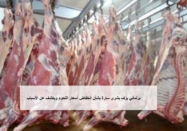 برلماني يزف بشرى سارة للمصريين بشأن انخفاض أسعار اللحوم ويكشف عن الأسباب