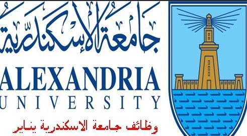 وظائف جامعة اسكندرية 2020