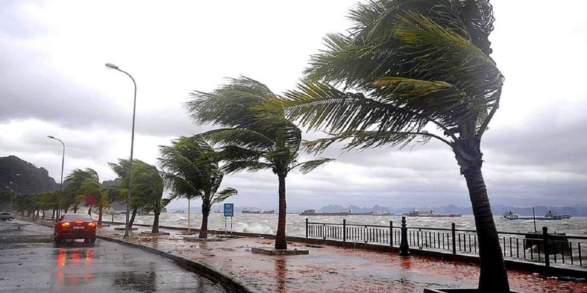 طقس اليوم الخميس 20 فبراير معتدل نهاراً وبارد ليلاً.. والأرصاد تعلن موعد انتهاء موجة الطقس السيئة