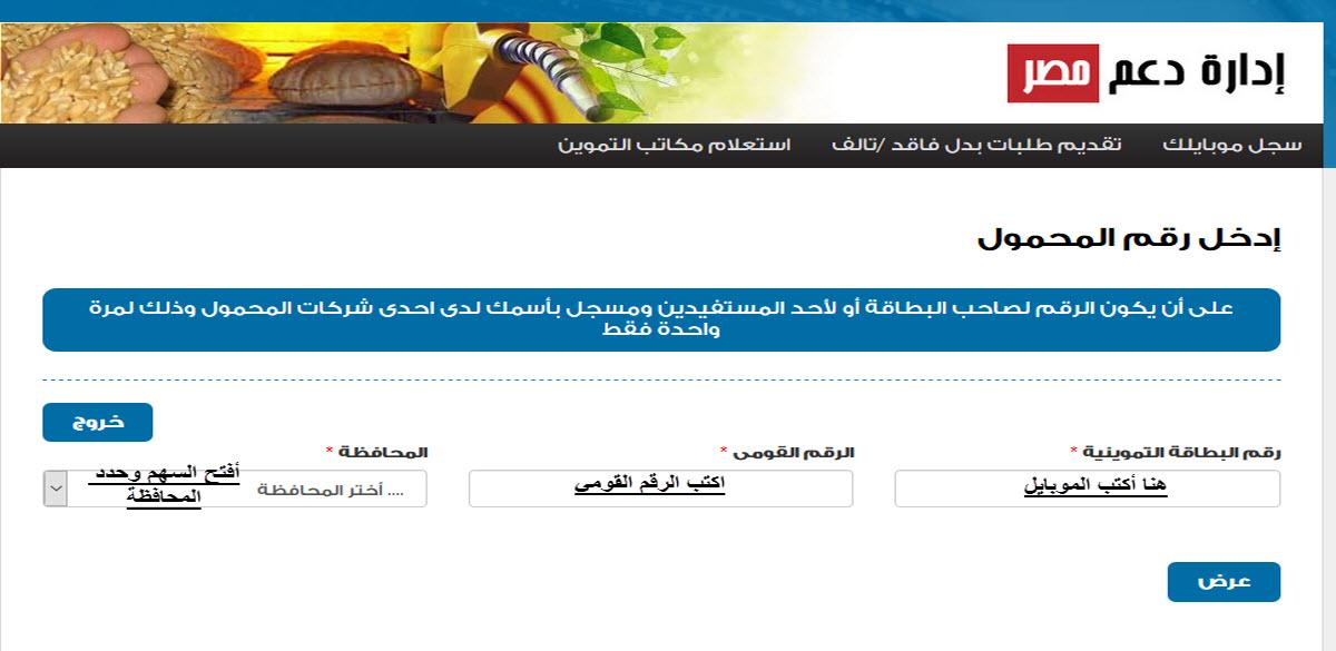موقع دعم مصر 2020