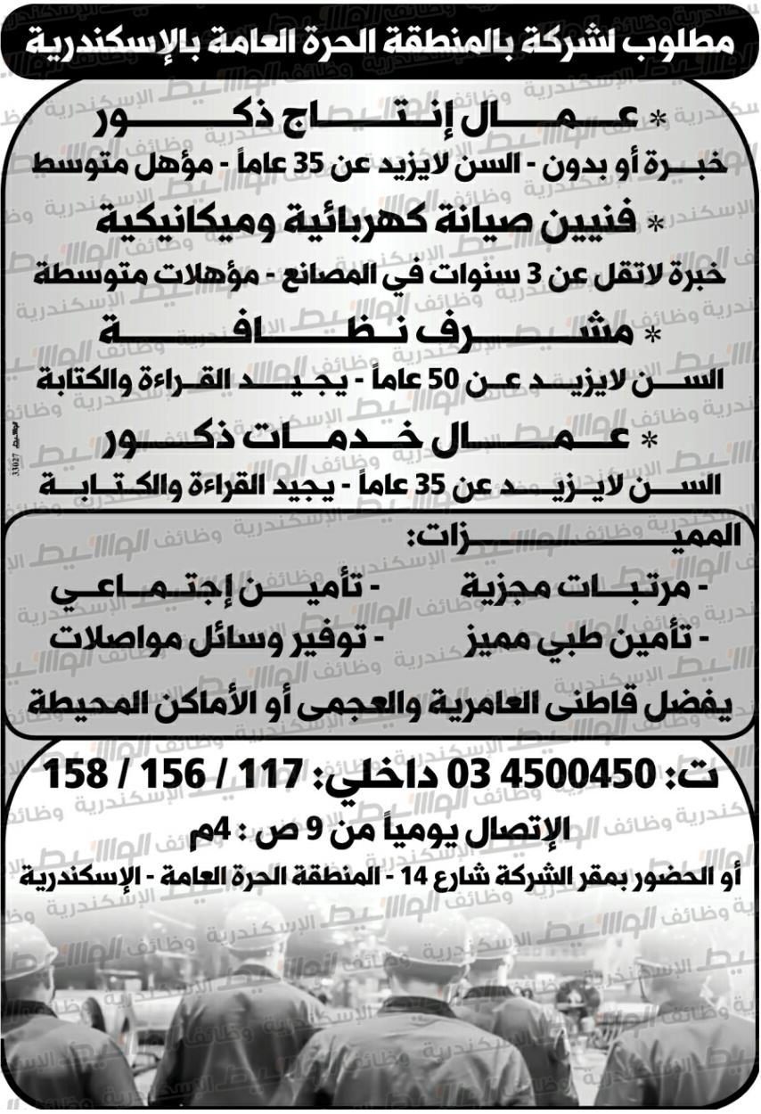 وظائف الوسيط اليوم الاسكندرية