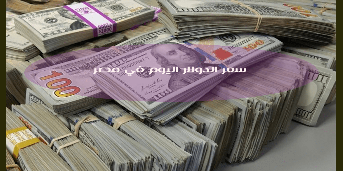 انخفاض سعر الدولار اليوم الثلاثاء 14 يوليو في بعض البنوك المصرية