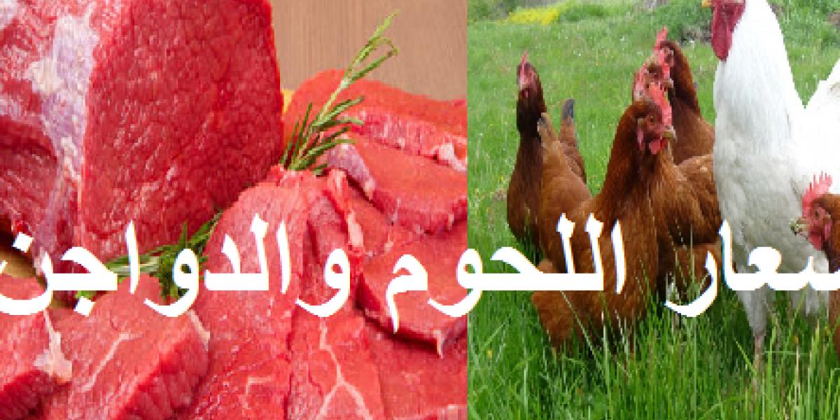 التموين تعلن أسعار اللحوم والدواجن وتخفيضات تصل إلى 20% على السلع الغذائية