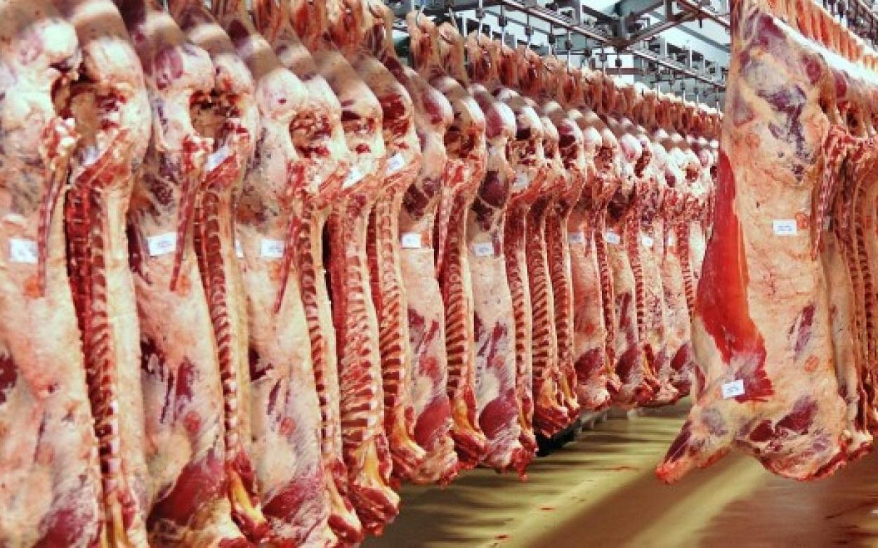 أسعار الدواجن واللحوم بمنافذ وزارة التموين وتخفيضات تصل لـ20% على السلع الغذائية
