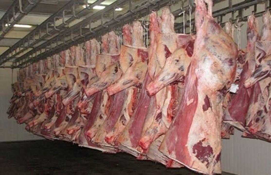 حقيقة انخفاض أسعار اللحوم والدواجن .. كيلو دواجن الأبيض 27 جنيها 1