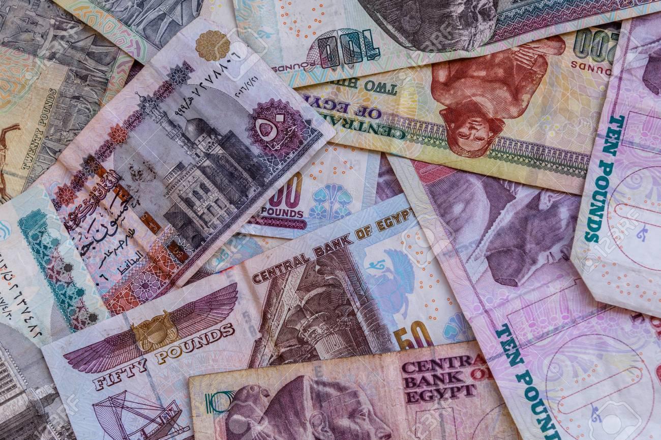 الحكومة تنفي وقف العملات الورقية بالتزامن مع إصدار العملات البلاستيكية 20