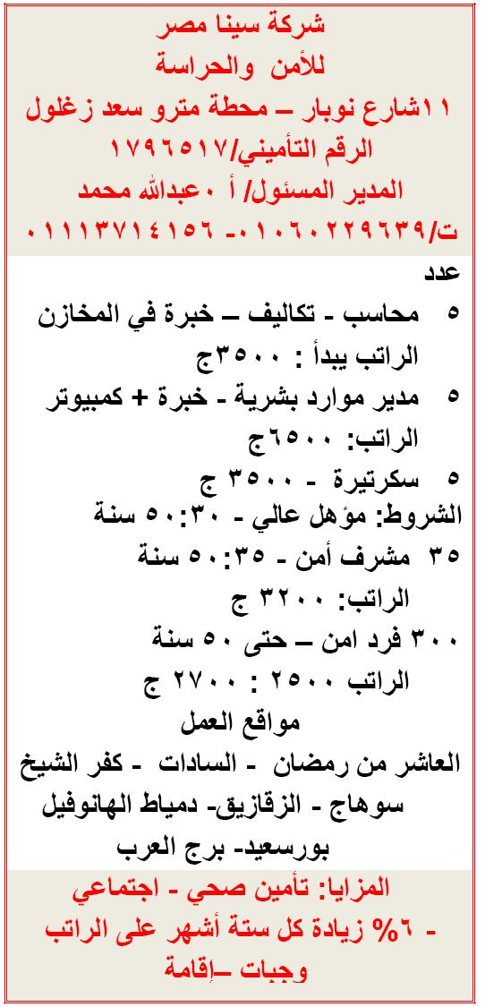 براتب 6500 جنية| وظائف خالية بشركة سينا مصر لجميع المؤهلات 1