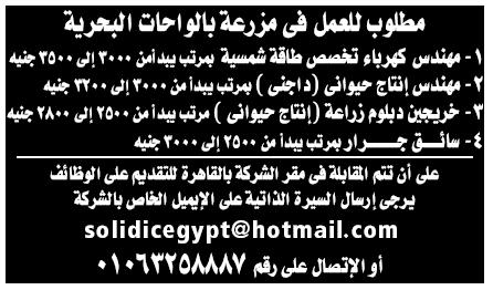 اعلانات وظائف جريدة الوسيط الأسبوعية لجميع المؤهلات 4