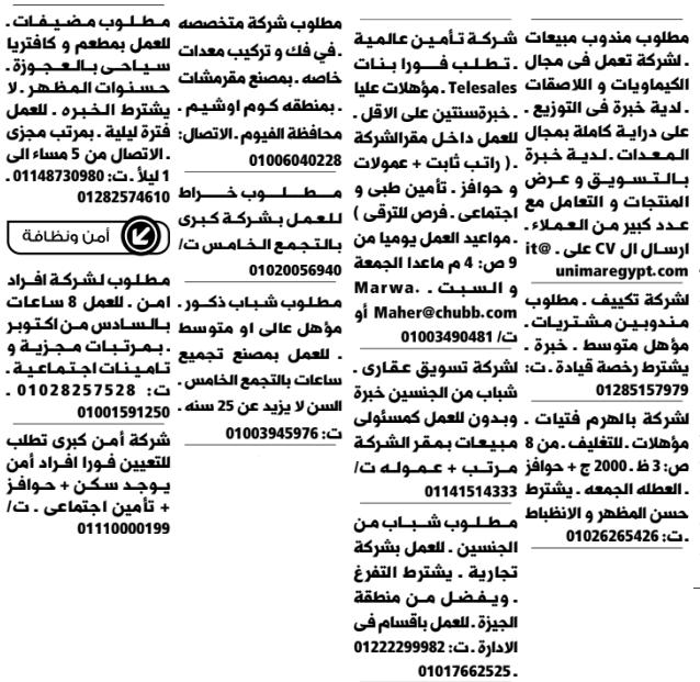 إعلانات وظائف جريدة الوسيط الاثنين 7/9/2020 13