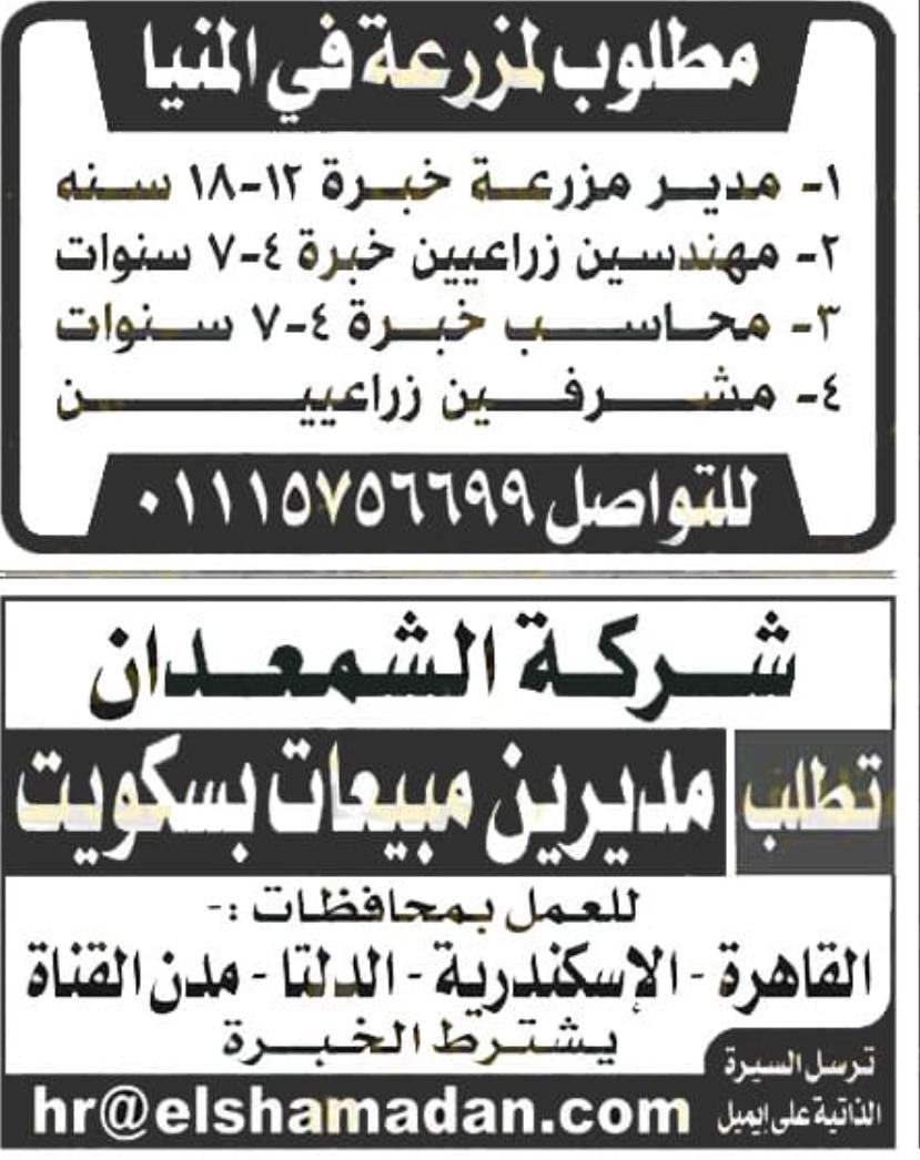 وظائف الأهرام الجمعة 16/10/2020.. جريدة الاهرام المصرية وظائف خالية 4