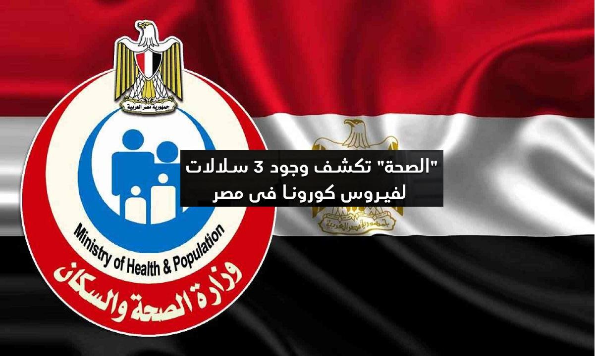 """الصحة تكشف تفاصيل وجود 3 سلالات من فيروس كورونا في مصر والناظر يؤكد """"فيديو"""""""