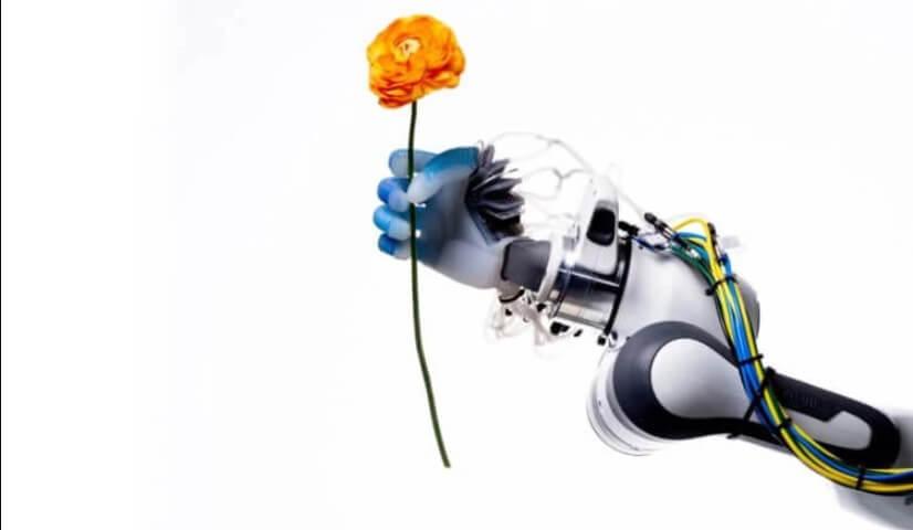 أفضل صور العلوم لعام 2020 ذراع آلية