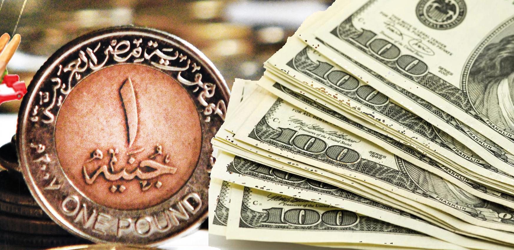 تحركات جديدة في سعر الدولار الآن بالبنوك تماشياً مع مؤشرات البنك المركزي لأسعار الدولار الأمريكي 19