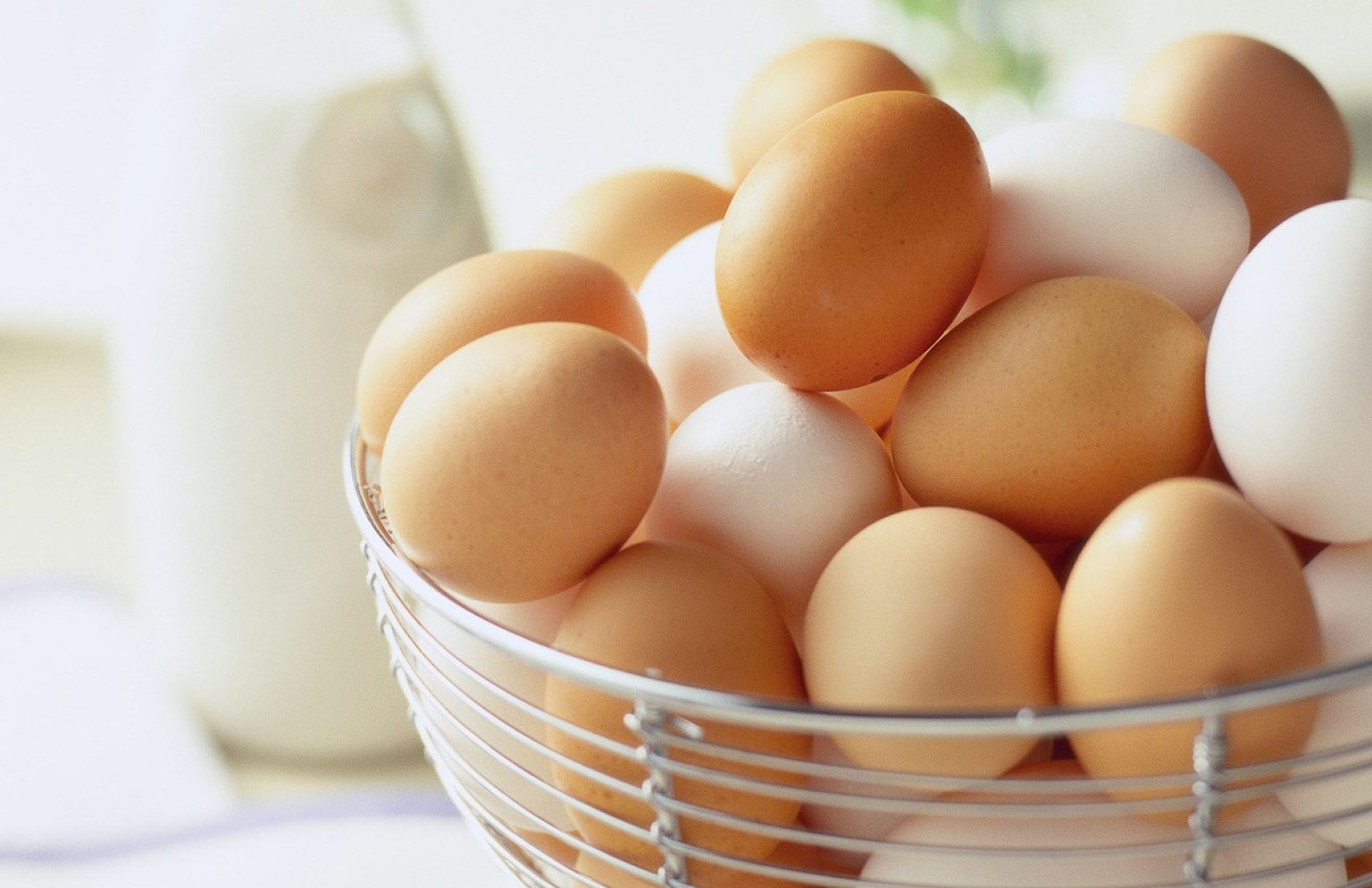 Dr. Walaa Abdel Hamid warns against consuming eggs and milk for Corona patients and recommends taking 3 types of medicines 1