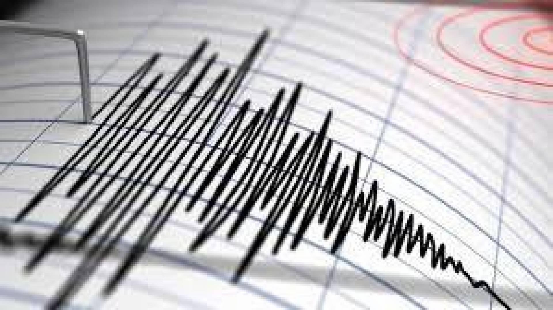 البحوث الفلكية: زلزال شمال الإسكندرية بقوة 3.5 ريختر