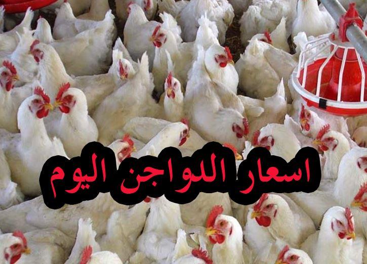 بورصة الدواجن والكتاكيت.. سعر الفراخ اليوم الثلاثاء 2 مارس 2021 5