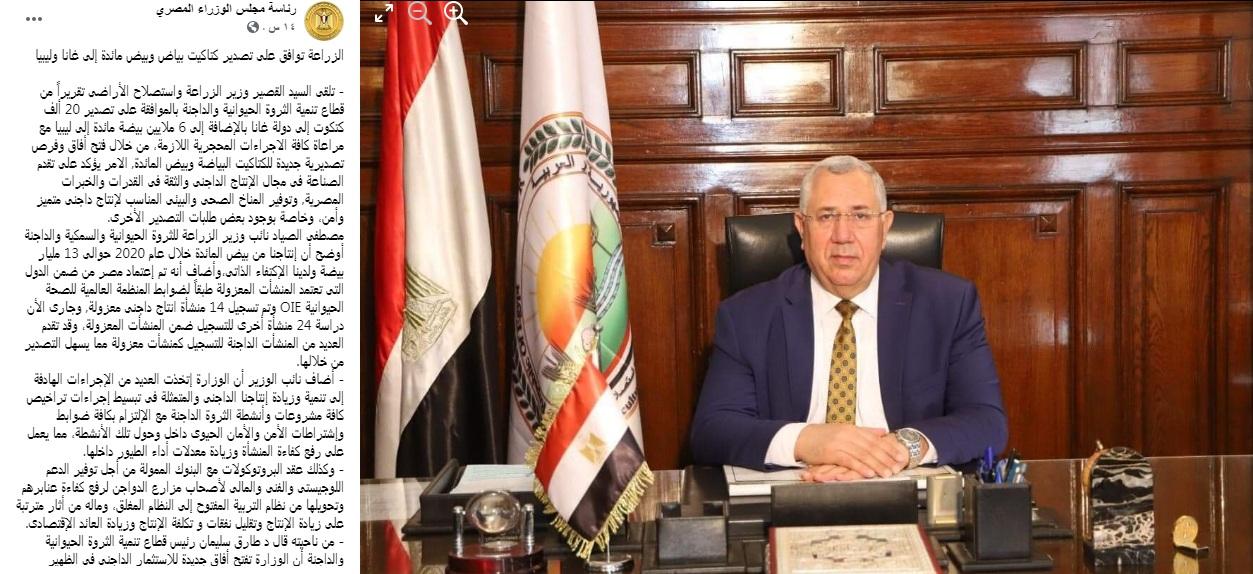 سعر الفراخ اليوم السبت 6 مارس 2021 تواصل ارتفاعها وقرار رسمي بالموافقة على تصدير الكتاكيت والبيض 51