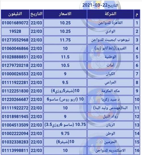 بورصة الدواجن.. تغيرات في سعر الكتكوت الأبيض اليوم وسعر الفراخ البيضاء اليوم والساسو 5