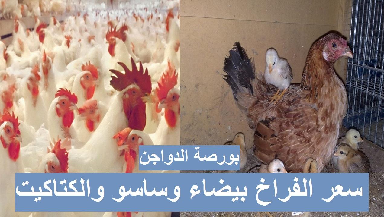 تراجع أسعار الدواجن رابع يوم رمضان.. سعر الفراخ البيضاء اليوم الجمعة 16 أبريل 2021 في بورصة الدواجن 4