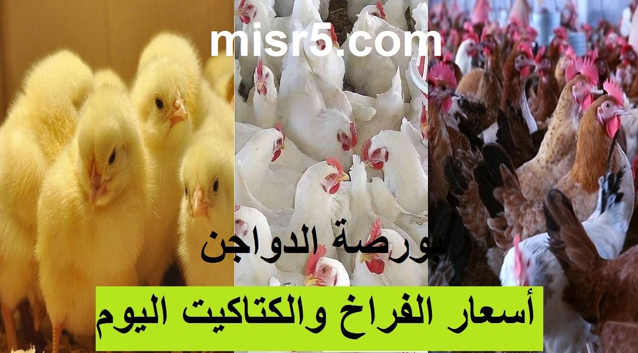 بورصة الدواجن.. أسعار الفراخ البيضاء والساسو والكتاكيت اليوم الجمعة 4 يونيو
