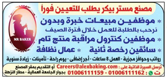 وظائف الوسيط اليوم 31/5/2021 نسخة الاسكندرية 9