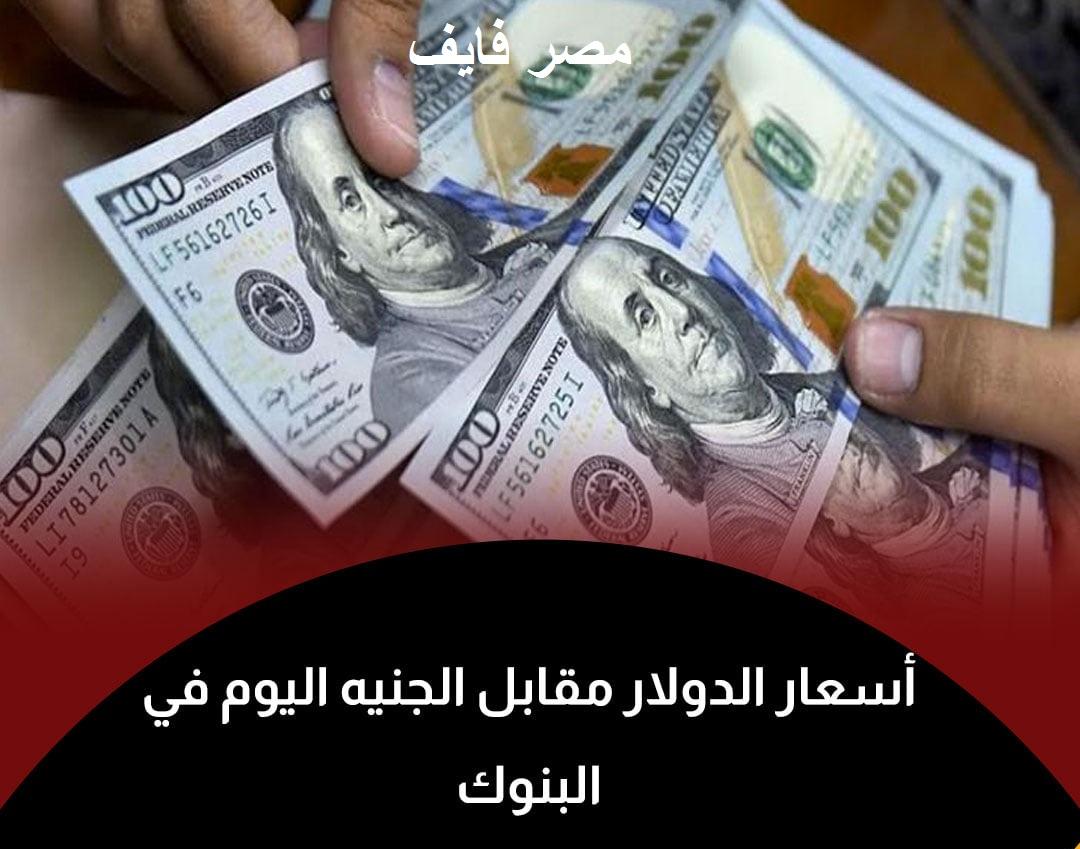 سعر الدولار اليوم الإثنين 7 يونيو 2021 مقابل الجنيه المصري وتوقعات أسعار العملة الأمريكية 2