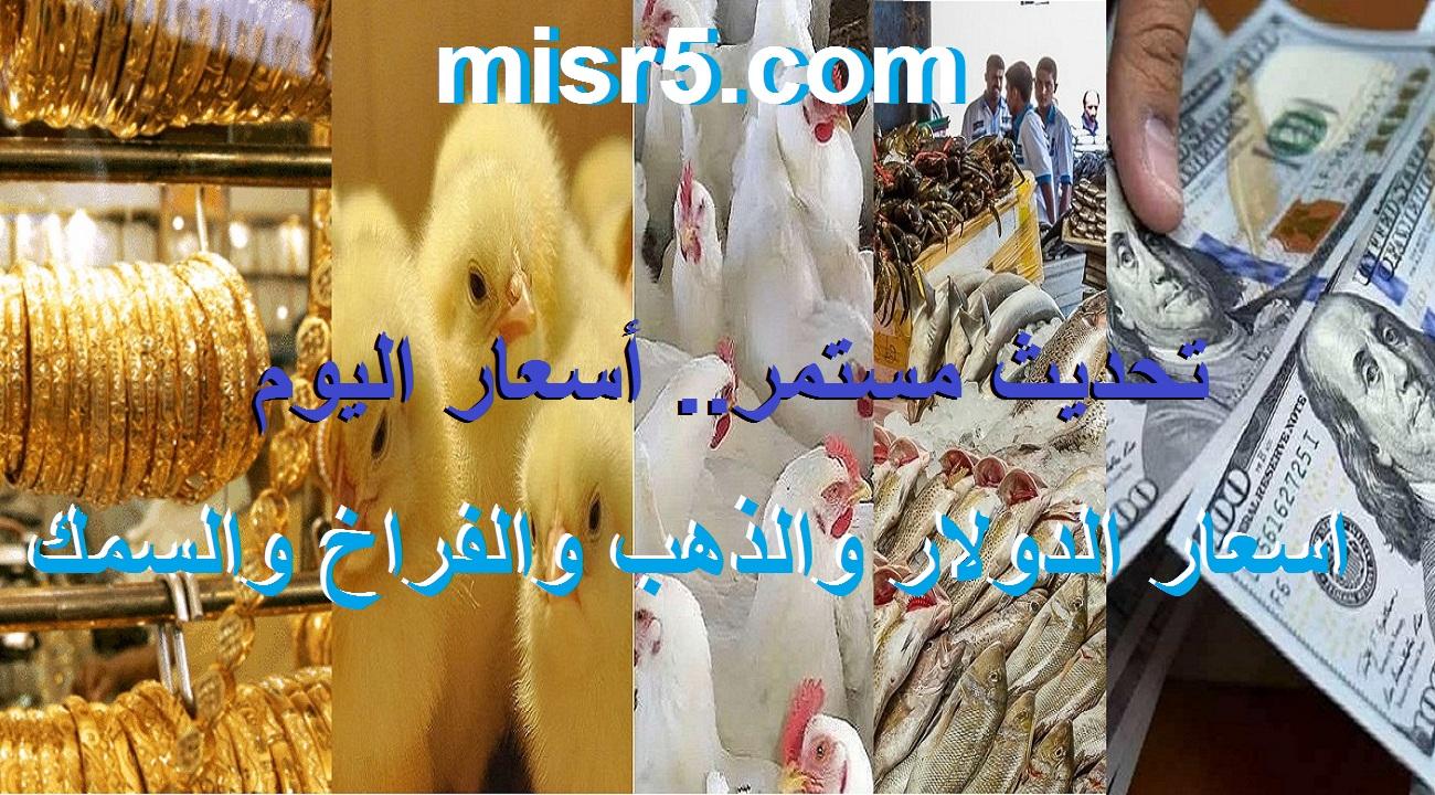 أسعار اليوم السبت 12 يونيو.. سعر السمك والفراخ والكتاكيت والذهب والدولار