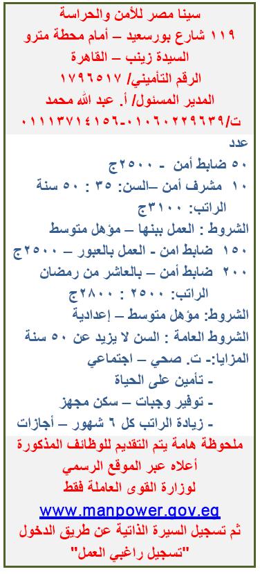 وظائف شركة سينا مصر للأمن والحراسة
