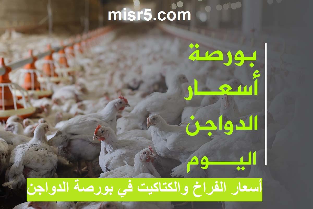 سعر الفراخ اليوم وأسعار بورصة الدواجن