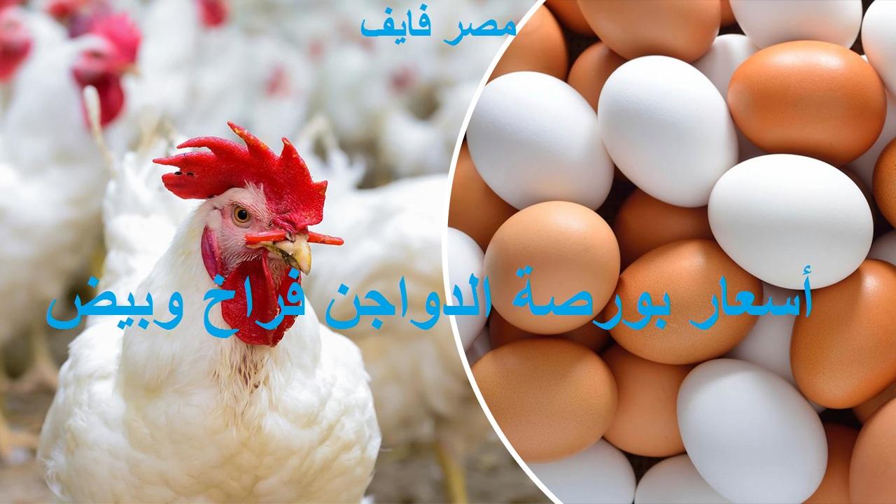 بورصة الدواجن الجمعة.. سعر الكتكوت الابيض اليوم 4 يونيو 2021 2