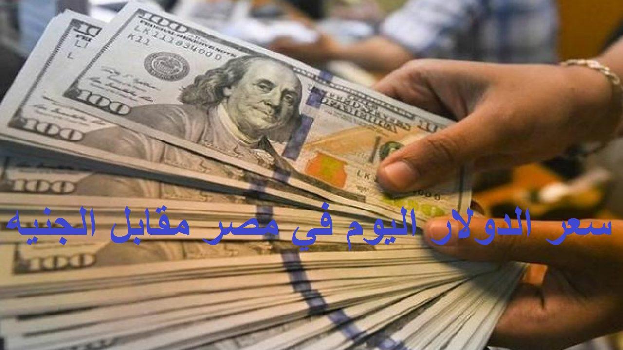 استقرار سعر الدولار اليوم في مصر الأحد 13 يونيو 2021 مقابل الجنيه