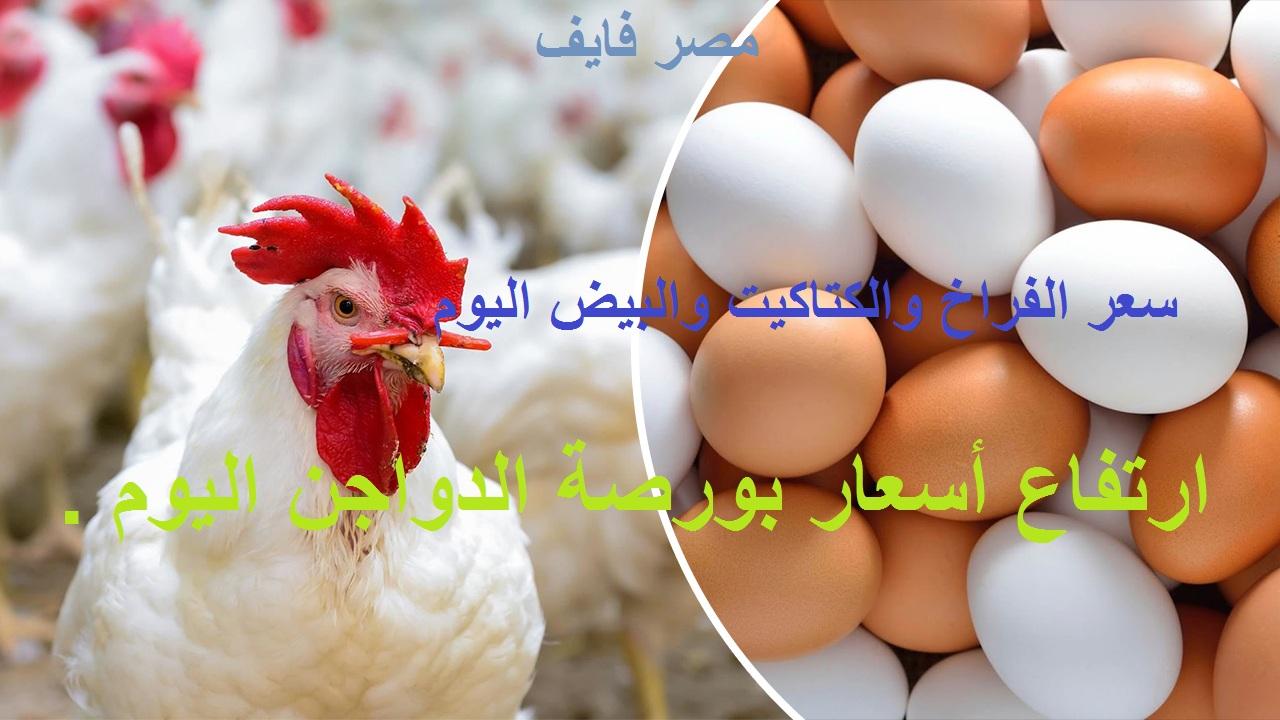 تفاصيل أسعار بورصة الدواجن اليوم 11 يوليو وسعر الفراخ والكتكوت والبيض