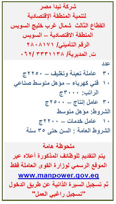 وظائف شركة تيدا مصر لتنمية المنطقة الاقتصادية