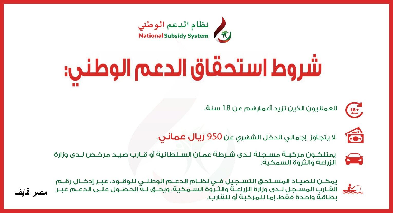 نظام الدعم الوطني