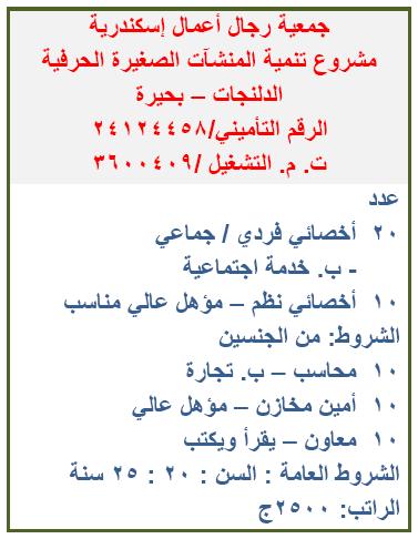 آلاف الوظائف المعلنة بنشرة وزارة القوى العاملة والهجرة لشهري يوليو وأغسطس 2021 1