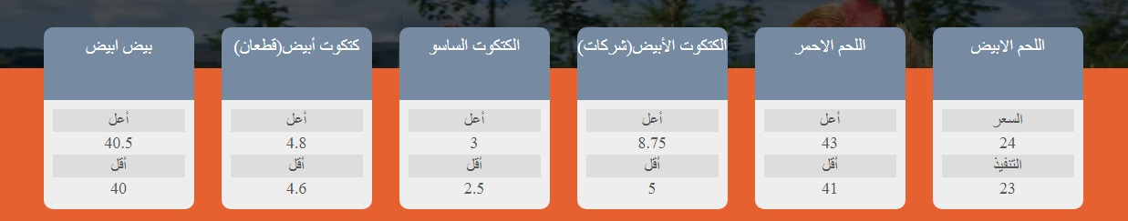 سعر الفراخ البيضاء اليوم السبت 23 أكتوبر وأسعار الفراخ الساسو والكتكوت الأبيض 12