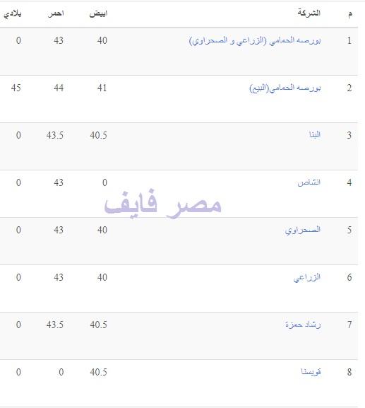 تفاصيل أسعار بورصة الدواجن اليوم 11 يوليو وسعر الفراخ والكتكوت والبيض 3