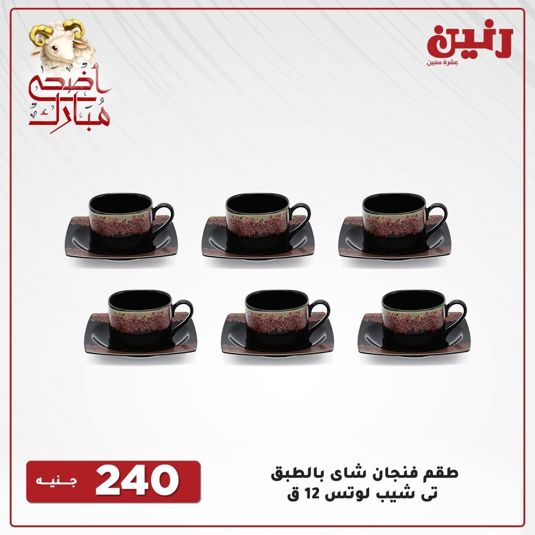 Raneen offers today for appliances and household appliances from 22 to 24 July 2021 14