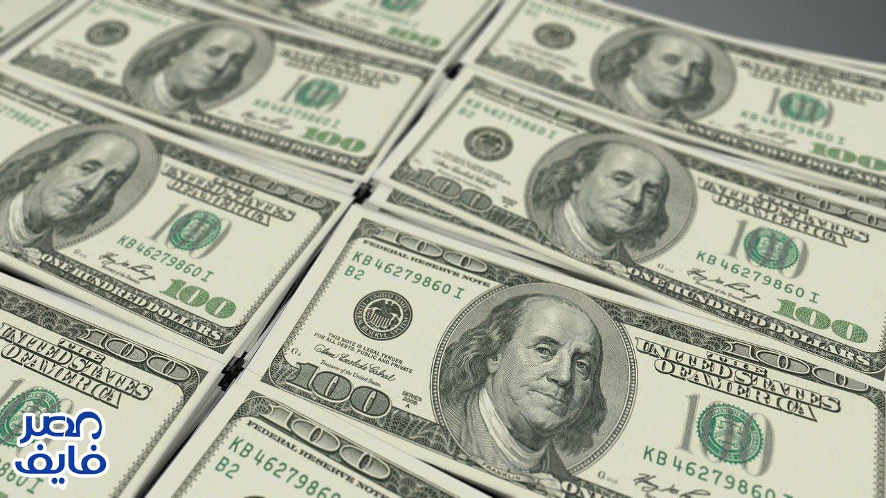 سعر الدولار اليوم 29 أغسطس 2021 واستقرار الدولار أمام الجنية المصري