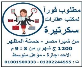 إعلانات وظائف جريدة الوسيط الأسبوعية اليوم الجمعة 3/9/2021 1