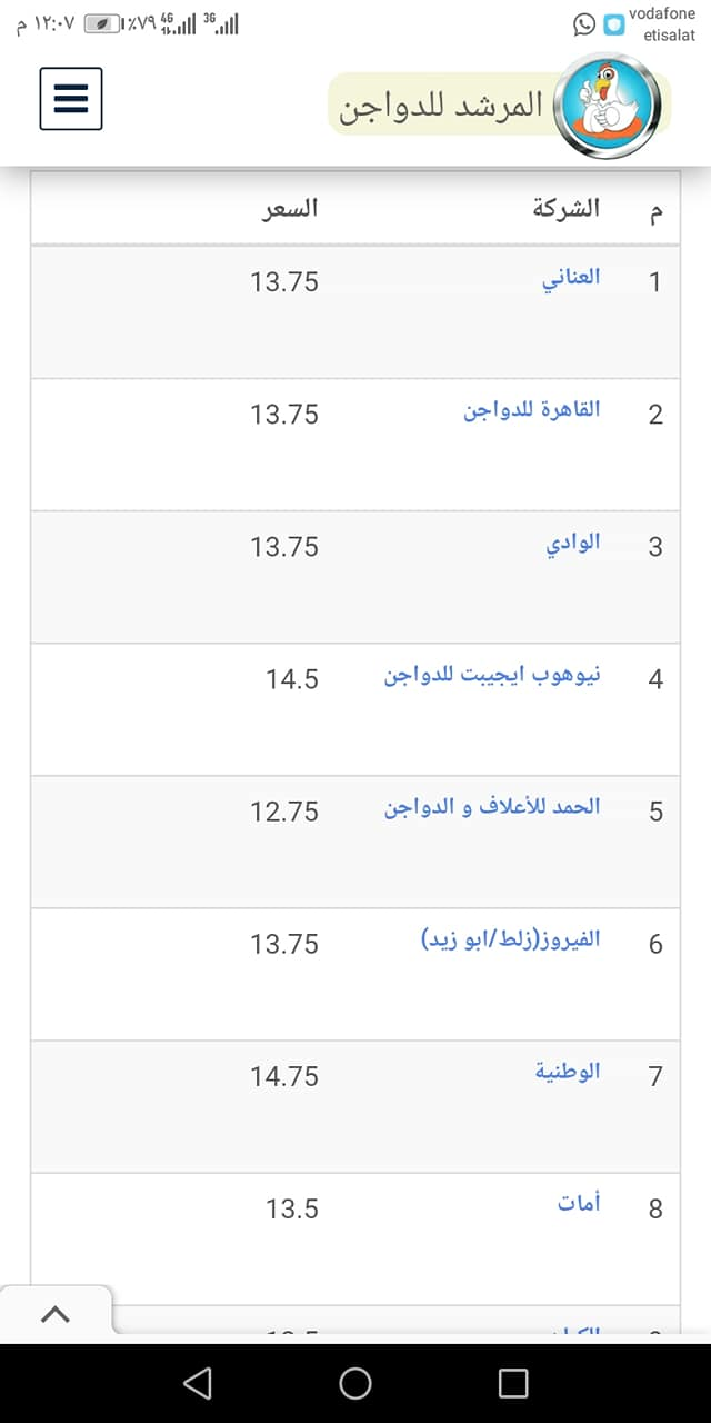 سعر الكتكوت الأبيض اليوم الأربعاء 27 أكتوبر 2021 بعد تراجع سعر الفراخ 5
